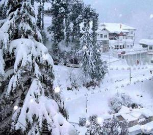 All Times Memorable Cheap Cost Honeymoon Packages in Shimla
