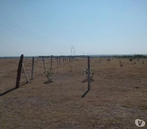 100121150200500 sq yards plots for sale,sambhar town