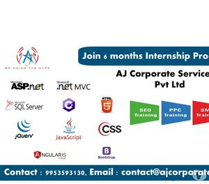 3 months internship on SEO & SMO in Faridabad Faridabad