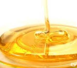 """Organic Hubb - Buy Organic Honey at best prices Faridabad"
