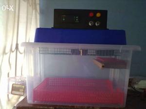 LCD display egg incubator (technique)