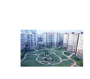 3Bhk Flats in Gillco Towers in Mohali, Sector-127