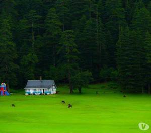 Memorable Low Cost Tour Packages in Himachal Pradesh to Gaya