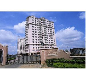 3 BHK flat available for rent in DLF Phase 5