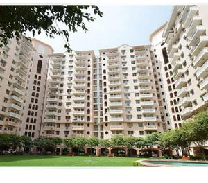 3 BHK apartment available for lease in DLF Wellington Estate