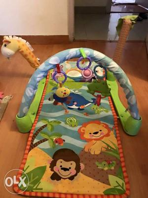 Fisher Price Play Activity Mat