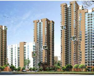 3 BHK flats for rent on Golf Course Extension Road