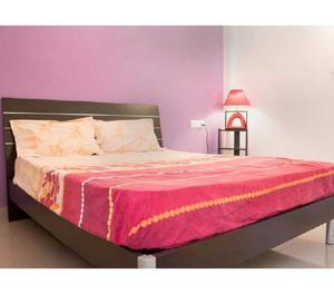 Rent a fully furnished flat in manikonda for family