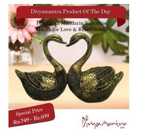Buy Mandarin Valentine Ducks for Love & Relationship Nagpur