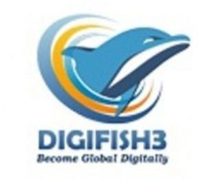 Digital Marketing Company India | Digifish3 Gurgaon