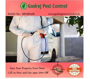 Low Cost Pest Control Noida and Delhi Services New Delhi