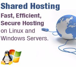 Shared web hosting New Delhi