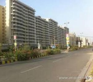 TDI 3 Bhk flat Semi for rent in kundli sonipat 9813199892