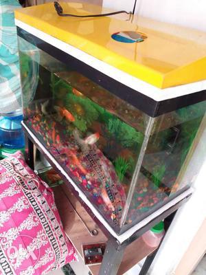 I want to sell my aquarium full set up