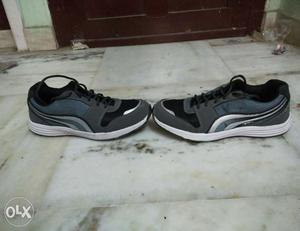 Sports shoes for sale. Pro Ase branded. Not used