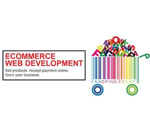 eCommerce Website Development Services in India Ahmedabad