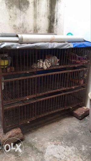 Brown Steel Chicken Cage