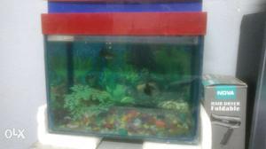 Aquarium 1.5 foot with gravel,6 fish and light