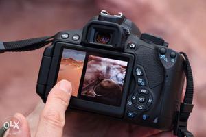 Canon 700 D, 2 lenses mm, mm