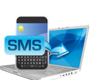 Bulk SMS Service In Lucknow Bulk Message service