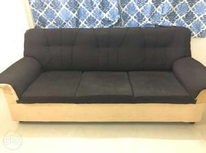 New sofa with good quality in 2 color
