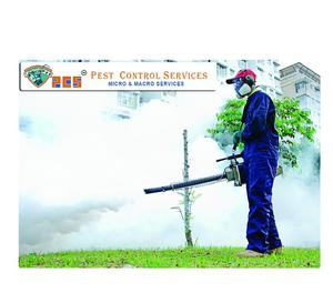 Pest Control Services | Residential Pest Control Services,
