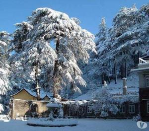 Shimla Trips in May-June with Cheap Cost from Chennai
