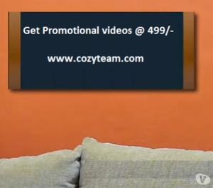 I will do a short promotional video on your product or busin
