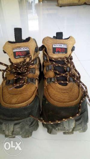 Woodland original shoes