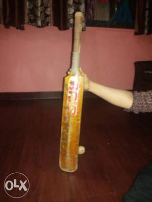 1 year use bat and it is a season bat