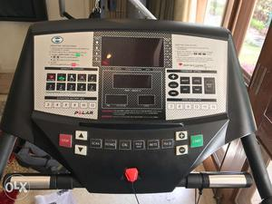 Deneb & Polak Patons Treadmill in Fabulous