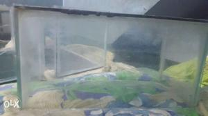 Fish tank greater than small size for sale bottom