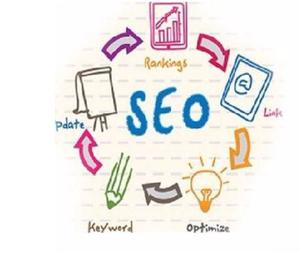 Get Quality Seo Services and Web Design Services Warangal