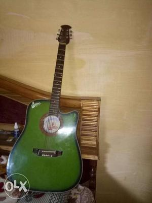 Signature company guitar In a very Gd condition