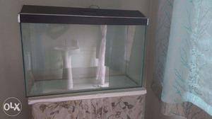 Fish Aquarium with free stones for decoration, 8 months old