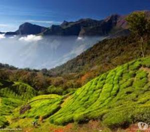 Experience Kerala Tour Code REH  New Delhi