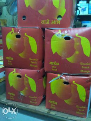 Kesar mangoes gir talala