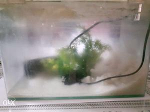 Aquarium in excellent working condition, only 6