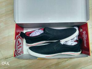 Roadster Men size 8 shoes brand new fine quality