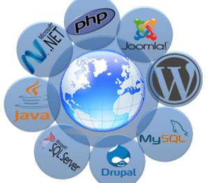 CBSPark- Ecommerce Web design and Development New Delhi
