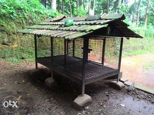 Black And Green Chicken Coop