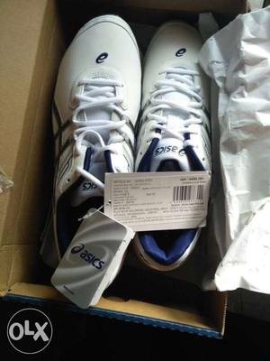New asics sports shoue of 12 size, with bill tag