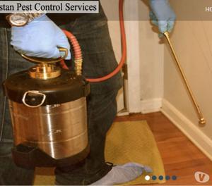 Termite Control Gurgaon | General pest control | Pest Contro