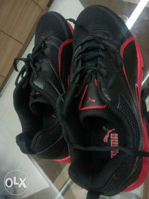 PUMA sports Shoes for sale Brand New Size -11 My