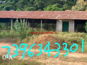Wanted poultry farm for lease