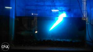 Fish tank with 10 big sharks 2 motors with
