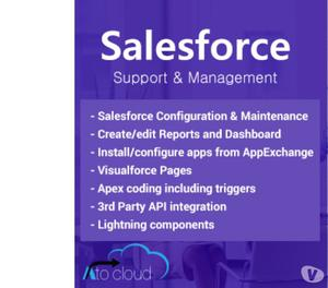 salesforce support and management services Faridabad