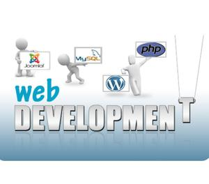 Web Development Company in Delhi New Delhi