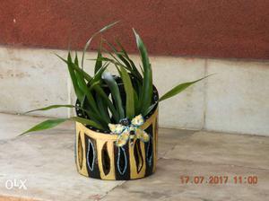 Painted Clay Pot Handicraft