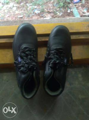 Allen cooper abroad. brand new safety shoes with